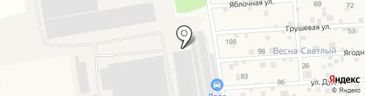 Оптим-Кран на карте Светлого
