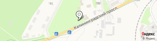 Банкомат, Сбербанк России на карте Светлогорска