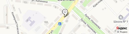 Балтптицепром на карте Светлого