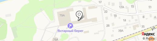 Аптечный пункт на карте Светлогорска