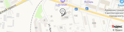Чайка на карте Светлогорска