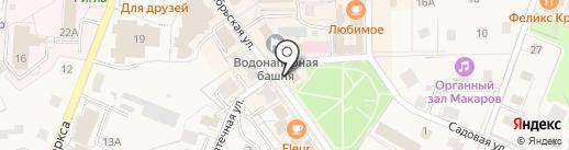 Вика на карте Светлогорска
