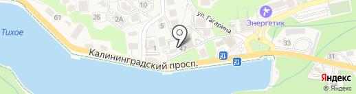 Biznes.ru на карте Светлогорска
