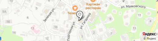 Компаньоны на карте Светлогорска