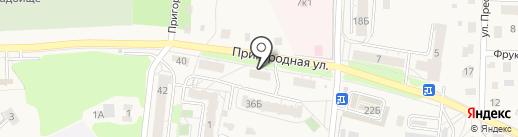 Комплексный центр социального обслуживания населения в Светлогорском районе на карте Светлогорска