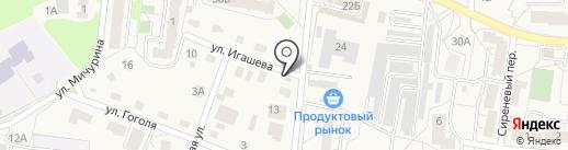 Лира на карте Светлогорска