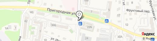 Шпик на карте Светлогорска
