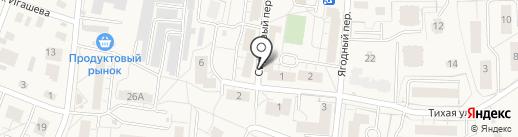 Центр занятости населения г. Светлогорска на карте Светлогорска