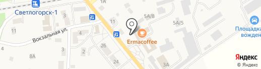 Пирожковая на карте Светлогорска