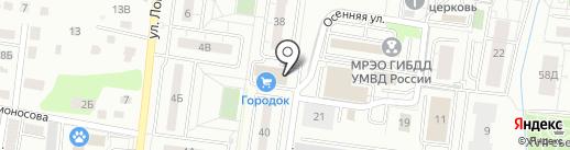 ОСАГО39 на карте Калининграда