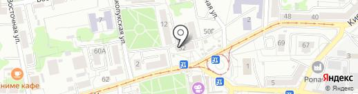 Алиса на карте Калининграда