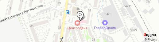 Циркондент на карте Калининграда