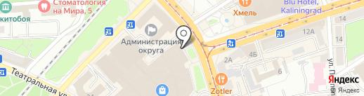 ИнстаВектор на карте Калининграда