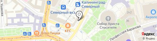 Дамы+ на карте Калининграда