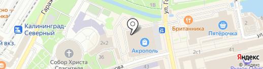 Rival на карте Калининграда