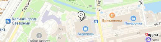 Primus на карте Калининграда