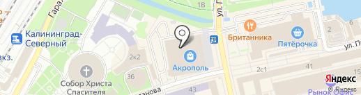 Стильный шаг на карте Калининграда