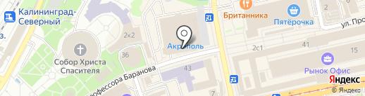 Графиня на карте Калининграда