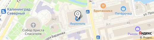 Снежана на карте Калининграда