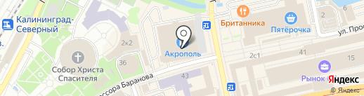 Rebecca на карте Калининграда