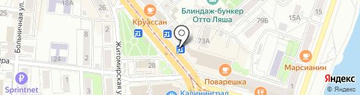 Макси-фото на карте Калининграда
