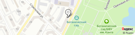 Феликс на карте Калининграда