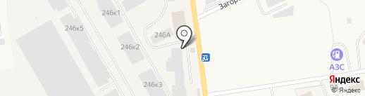 Байпас на карте Калининграда