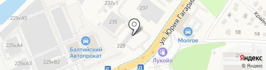 Аугуст на карте Калининграда