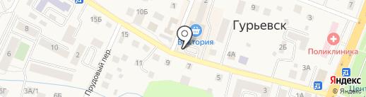 Цветочные Истории на карте Гурьевска