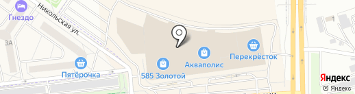 Animate на карте Пскова
