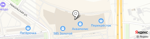 Шиншилла на карте Пскова