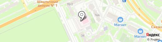Псковская детская городская поликлиника на карте Пскова