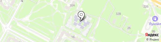 Аистёнок на карте Пскова