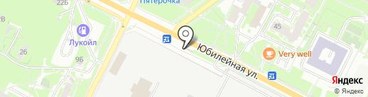 Mini на карте Пскова