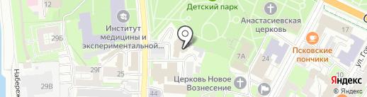 Артист на карте Пскова