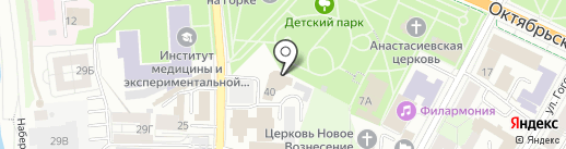 Mirror на карте Пскова