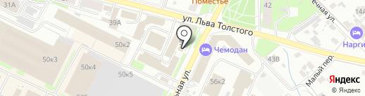 Дельфин на карте Пскова