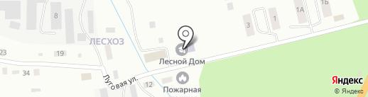 Лесной дом на карте Пскова