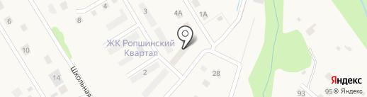 Ропшинский квартал на карте Ропши