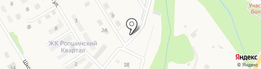 На речке на карте Ропши
