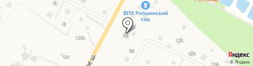 Ропшинский сад на карте Ропши