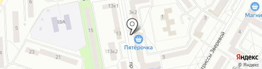 Магазин зоотоваров и игрушек на карте Гатчины