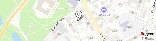 Клиника доктора Борисова на карте Гатчины