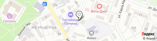СМИС на карте Гатчины