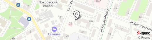 Вита-Дент на карте Гатчины