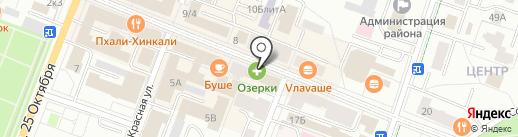 Профи на карте Гатчины