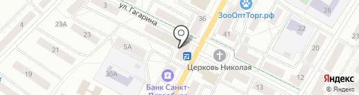 ЕвроДент на карте Гатчины