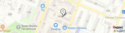 Все у Бориса на карте Гатчины