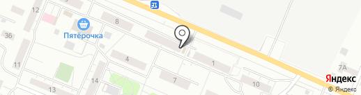 Муха на карте Сертолово