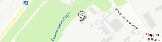 Романов и К на карте Сертолово